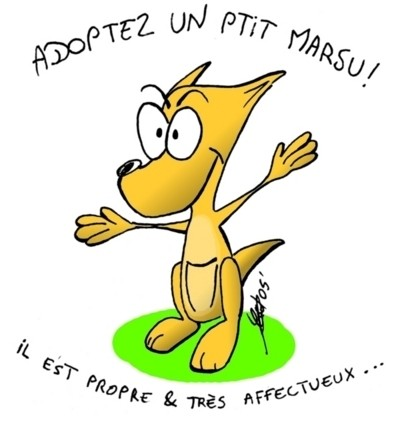 http://blanchard.cedric.pagesperso-orange.fr/dessins/marsuTS1.jpg